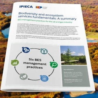 Biodiversity and ecosystem services fundamentals: A summary